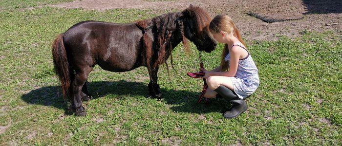 pony pret dag op 25 april
