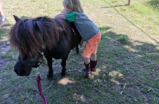 Pony Pret ochtend op zaterdag 8 mei