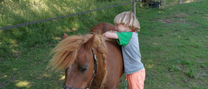 Pony Pret dag 11 oktober