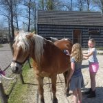 Kind & Pony deel II