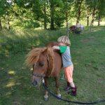 Pony Pret dag 16 oktober